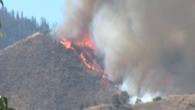 حرائق هائلة تجتاح غابات كاليفورنيا وتشرد المئات