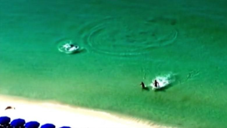 شاهد أشخاصا يركضون على الماء هربا من سمكة قرش