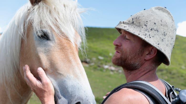 بالصور..الخيول تتماهى مع الطبيعة في المروج السويسرية