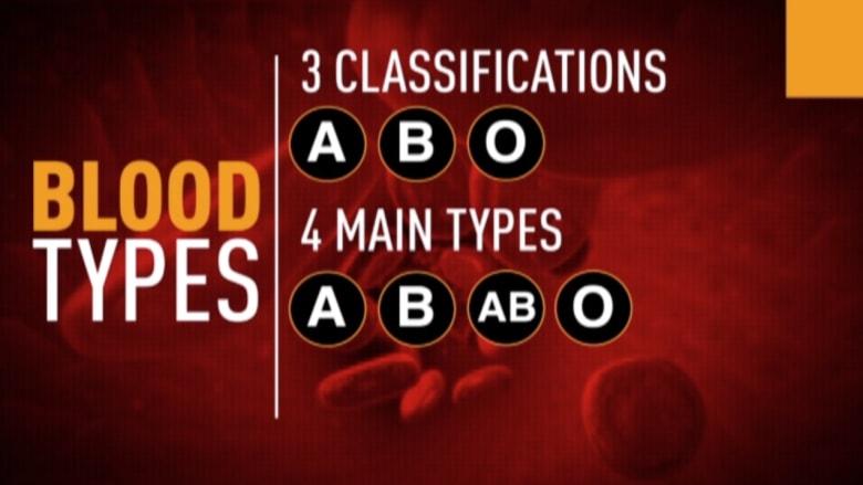 بالفيديو.. ماذا تعرف عن عمل الدم في الجسم؟