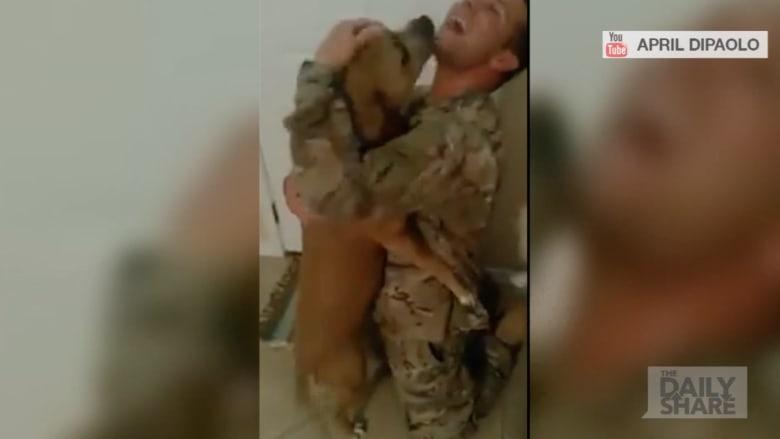 شاهد لقاء كلب بصاحبه بعد 7 أشهر من غيابه
