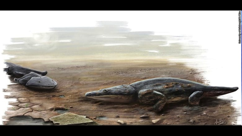 اكتشاف بقايا حيوان بر مائي قاتل كان بحجم سيارة صغيرة