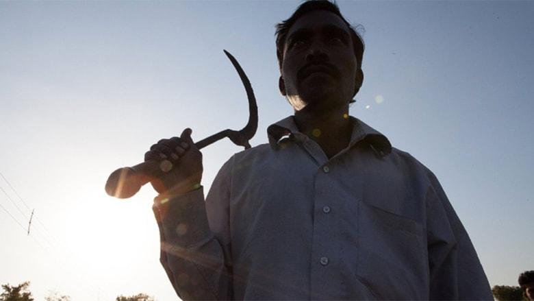 لماذا ينتحر مزارعو القطن في الهند؟