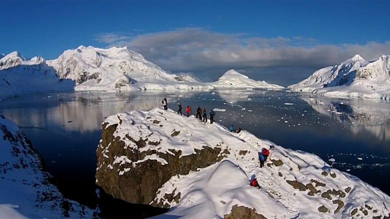 بالفيديو.. مشاهد مذهلة للبطاريق تجتاح القارة القطبية الجنوبية