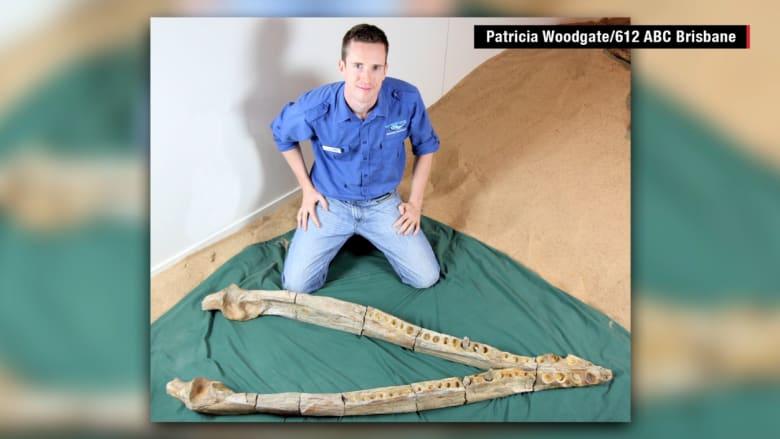 مزارع يعثر على أحفورة لحيوان بحري مفترس عاش قبل أكثر من 100 مليون عام