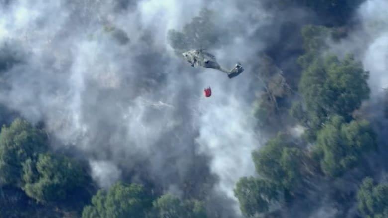 فيديو من السماء.. كيف تبدو حرائق الغابات في كاليفورنيا؟