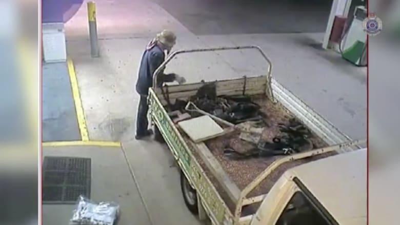 شاهد بالفيديو .. عملية مضحكة من لص مغفل لسرقة الصراف الآلي