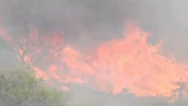 بالفيديو..محاولات لاحتواء حريق يلتهم الغابات ناجم عن احتراق مقطورة
