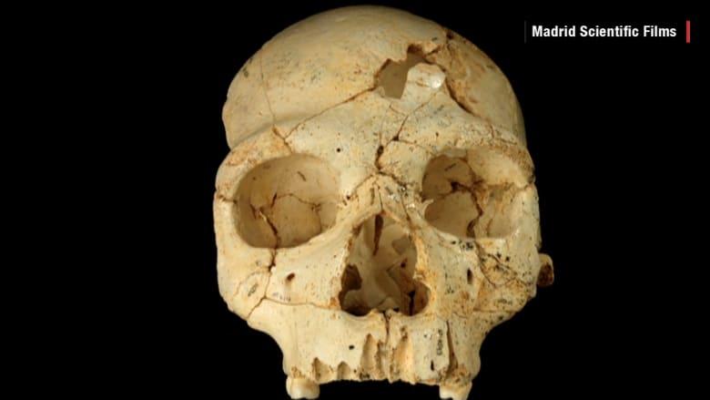 """جمجمة لـ""""أسلاف البشر"""" تكشف جريمة قتل عمرها 430 ألف سنة"""