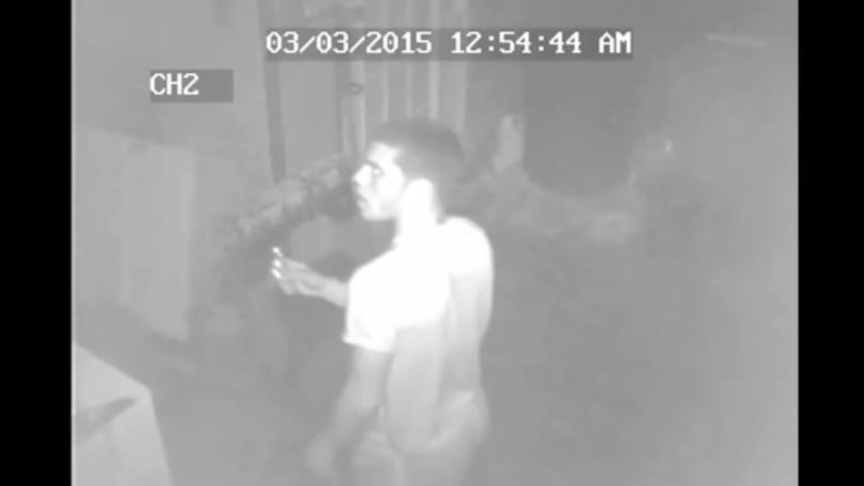 ثلاثة شبان يسرقون 150 حمامة من حظيرة في أمريكا
