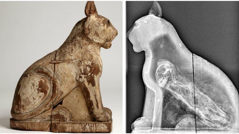 هل كشفت هذه المومياوات المصرية إحدى أقدم عمليات الاحتيال عبر التاريخ؟