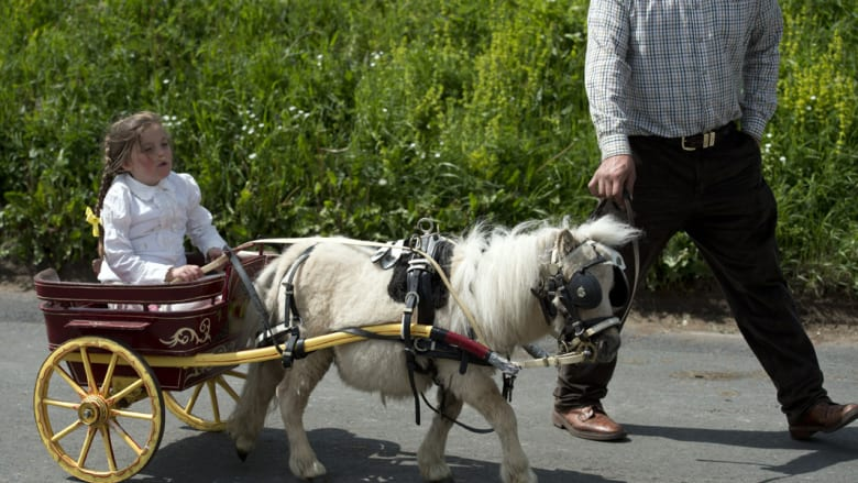 """بالصور..""""كارافان"""" وعربات تقليدية لجر الخيول في معرض أبليبي البريطاني"""