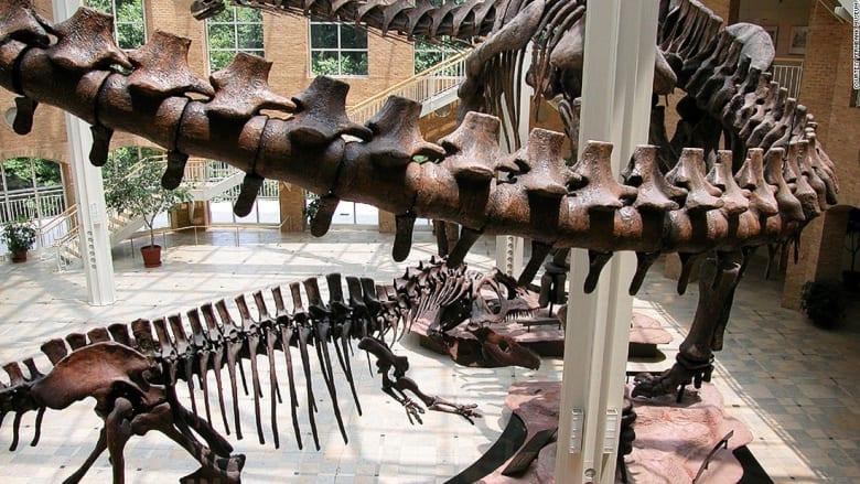 بالصور.. أشهر متاحف الديناصورات حول العالم