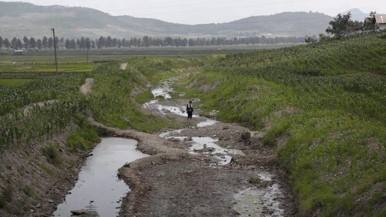 شبح المجاعة يحوم حول كوريا الشمالية وناجية تتذكر: أكلنا بالمرة الأخيرة أعشاب الأرانب
