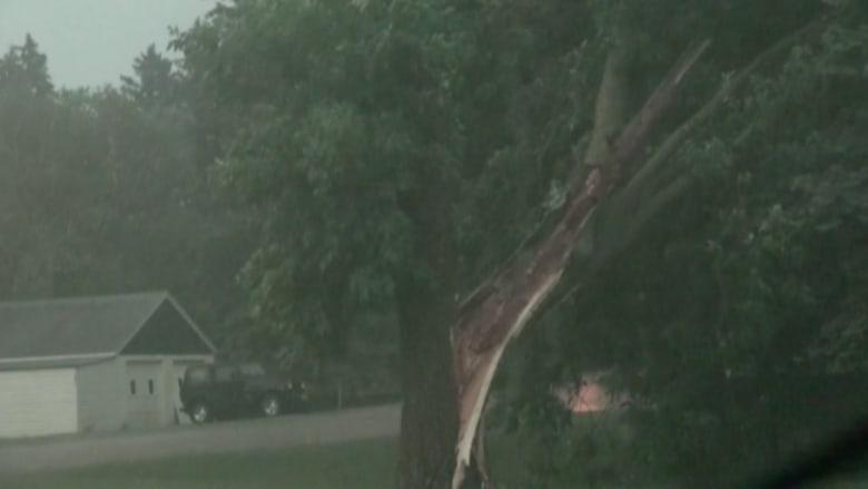 شاهد..عواصف مينيسوتا.. أمطار غزيرة ورياح عاتية