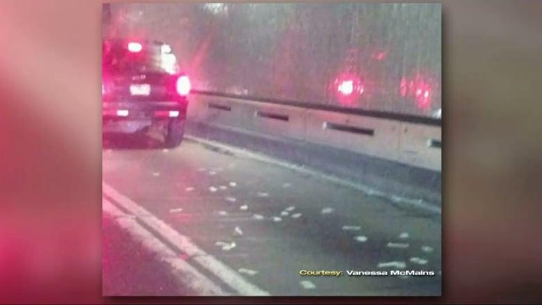 بالفيديو.. أكوام من النقود على شارع في ولاية ميريلاند والسائقون يتوقفون لالتقاطها