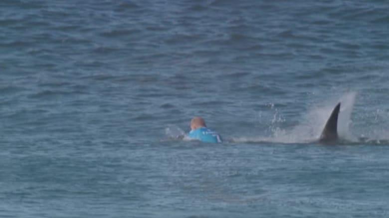شاهد.. نتيجة الصراع بين أحد راكبي الأمواج وسمكة قرش.. وتدخل المنقذين