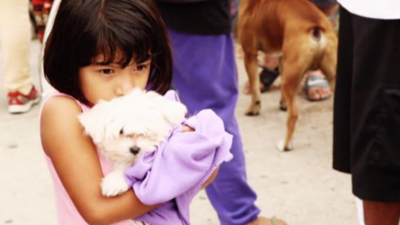 بالفيديو..جمعية لمساعدة الفقراء على رعاية حيواناتهم الأليفة