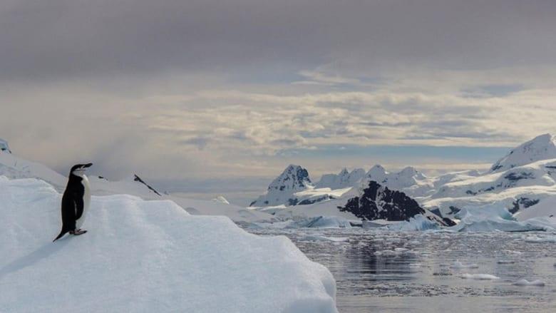 استكشف القطب الجنوبي