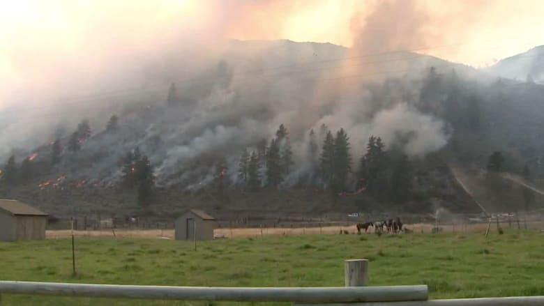 بالفيديو.. مشاهد مفزعة لحرائق غابات تجتاح ولاية واشنطن