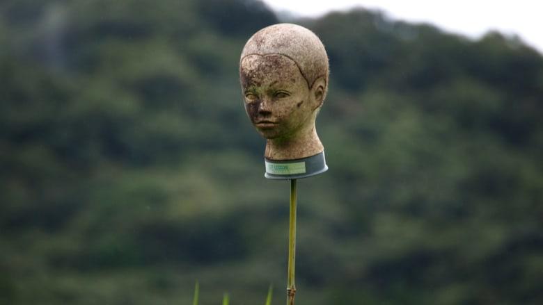 هذا ما يستخدمه المزارعون في اليابان لإخافة الطيور و.. البشر!