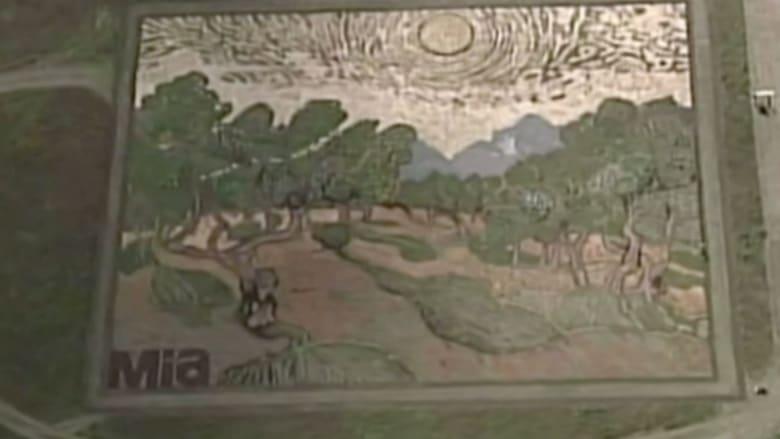 بالفيديو.. لوحة فنية على الأرض لا تشاهد إلا من الطائرات