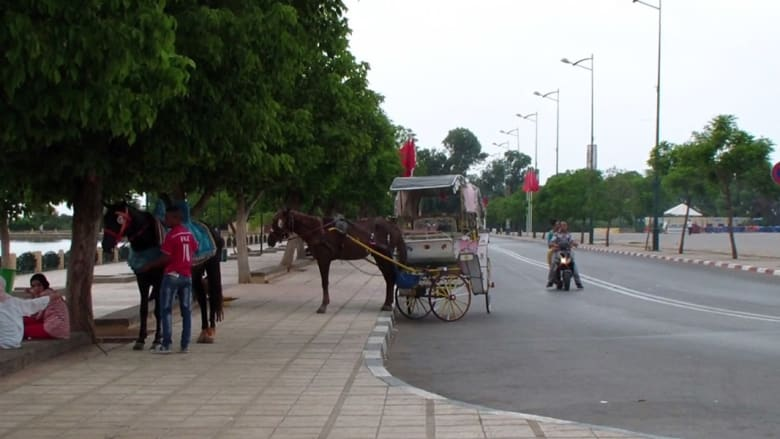 """""""الكوتشي"""".. وسيلة نقل وترفيه وسياحة في المغرب"""