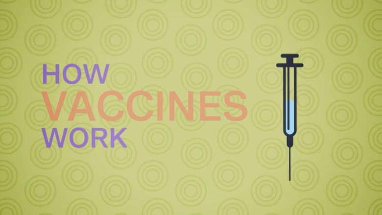 كيف تُوقف اللقاحات الأمراض مثل الحصبة
