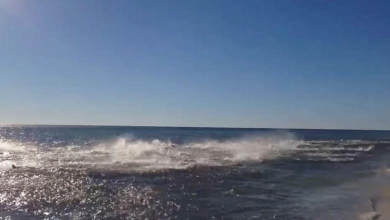 بالفيديو.. عائلة تتفاجأ بمئات أسماك القرش الهائجة قرب شاطيء بفلوريدا