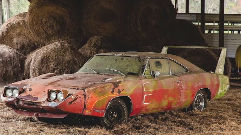 بالفيديو.. العثور على سيارة نادرة في مخزن للحبوب بعد أكثر من 40 عاماً