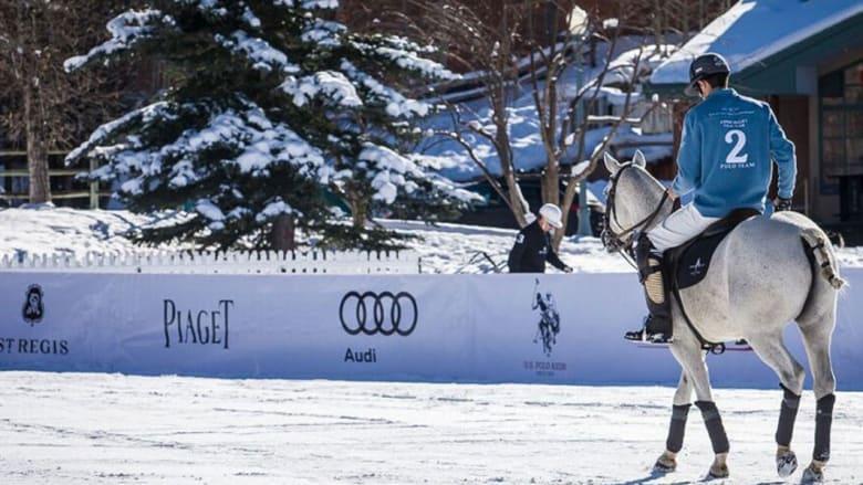 """البولو على الثلج: النسخة الشتوية """"المثيرة"""" للرجل وحصانه"""
