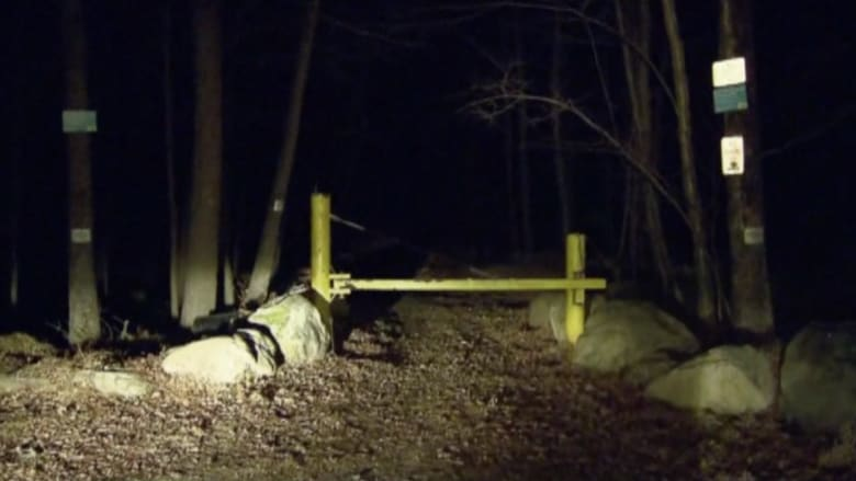 بالفيديو: إنقاذ رئيس فريق كشافة من بين أنياب دب ضخم اختطفه إلى كهفه