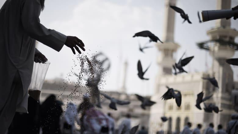 """مؤتمر لـ""""الرحمة"""" بزمن """"التكالب على السعودية والإسلام"""" والمزيد لـCNN: رحمة النبي تجاوزت حتى البشر"""
