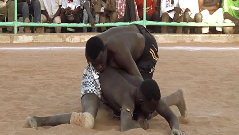"""أشبال وفرسان يتواجهون في المصارعة السودانية.. القوة """"سلطان أخرس"""" أمام النساء الجميلات"""