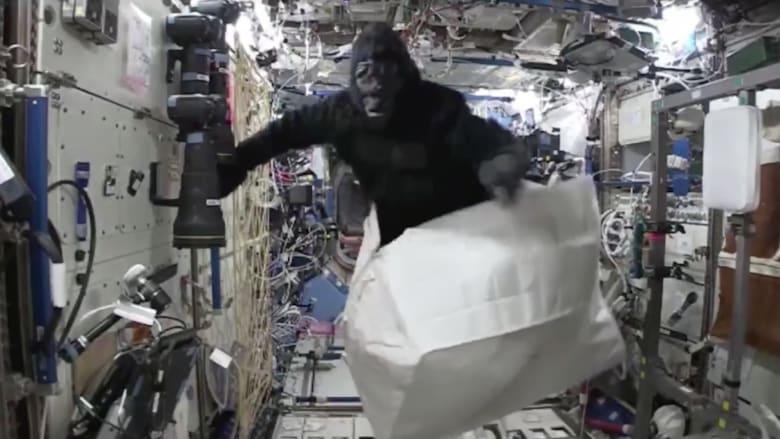 شاهد.. غوريلا على متن محطة الفضاء الدولية!