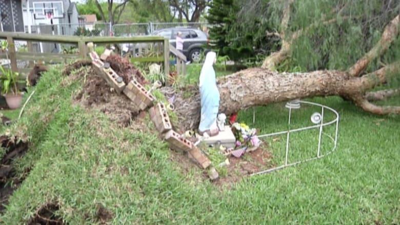 """بالفيديو: تمثال لـ""""مريم العذراء"""" ينجو من شجرة ضخمة تهوي جراء عاصفة"""