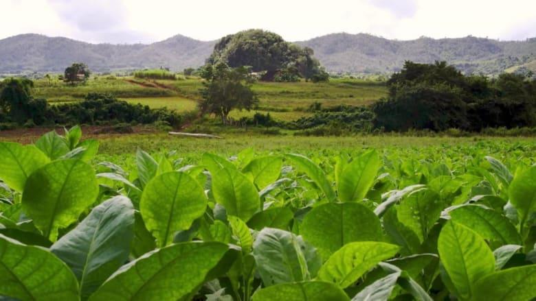 ما سيجذب السياح الأثرياء إلى كوبا.. بعد عقود من العزلة؟