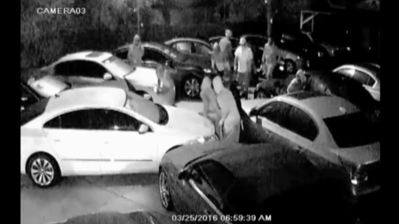 بالفيديو: مجموعة أشخاص يسرقون 8 سيارات دفعة واحدة من شركة بيع للسيارات في فلوريدا