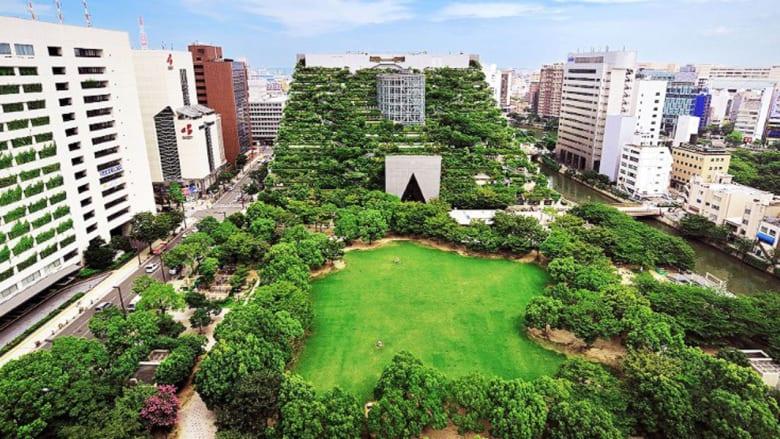 بالصور..حدائق معلقة بين السماء والأرض