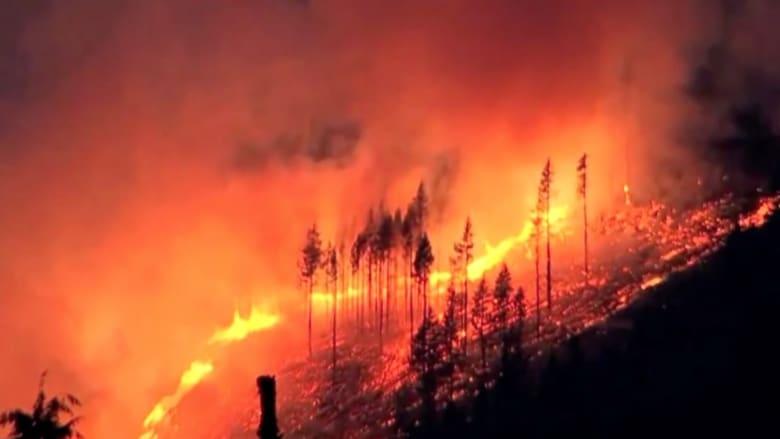 بالفيديو: فرق الدفاع المدني تعمل للسيطرة على حريق هائل في غابات ولاية واشنطن