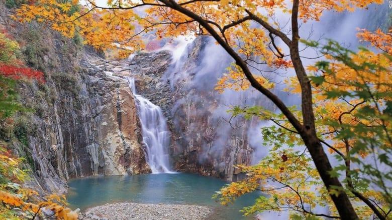 كنز من الطبيعة تخفيه اليابان... كن أول من يشاهده
