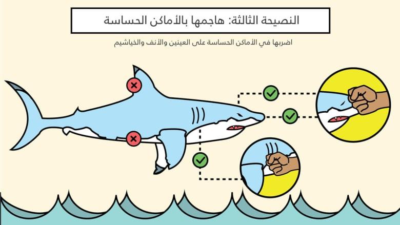 4 نصائح للتغلب على أسماك القرش خلال عطلتك المقبلة
