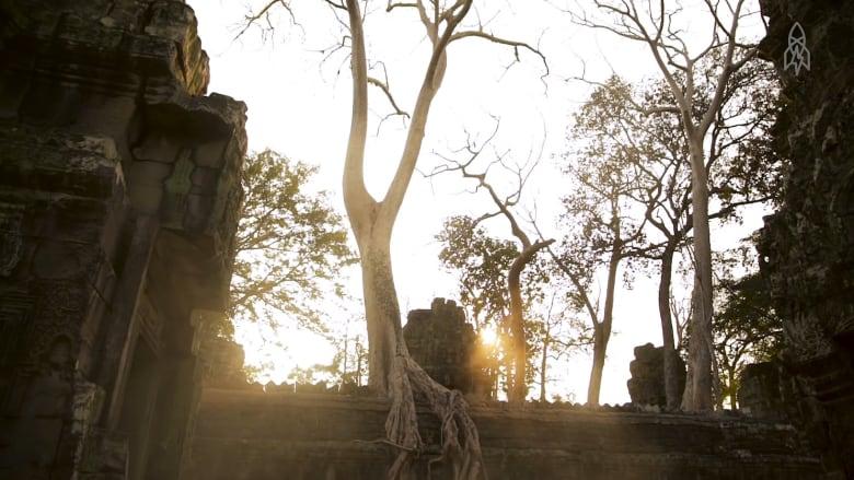 """جولة في معبد """"الأشجار"""".. حيث للصلاة معنى آخر بين الأدغال"""