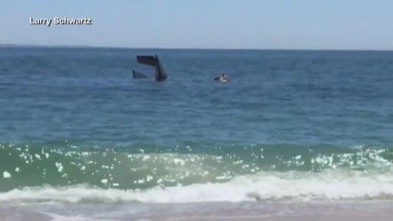 بالفيديو: تحطم طائرة قرب ساحل بلدة أمريكية.. وحراس الشاطئ ينقذون الطيار