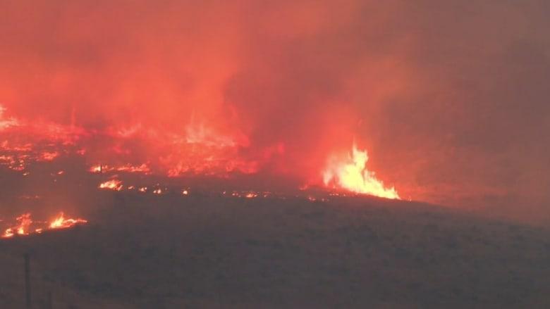 شاهد.. حرائق هائلة تدمر عشرات المباني وتقتل شخصين في كاليفورنيا