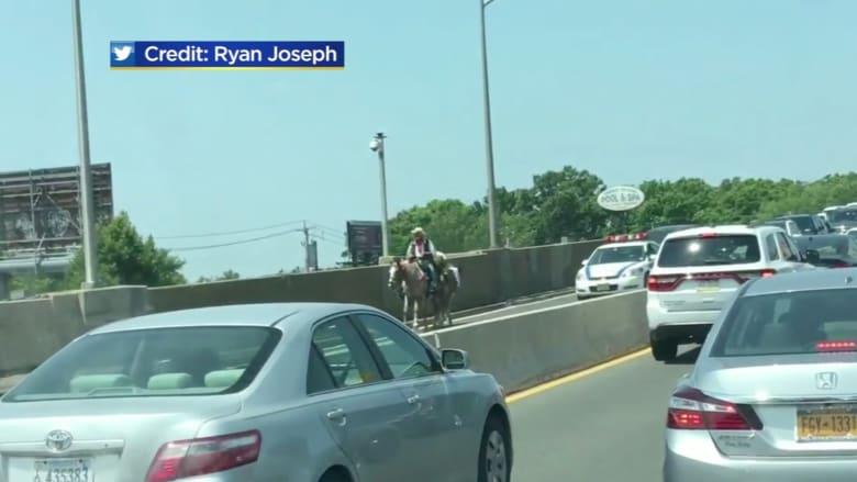 شاهد.. رجل بزي رعاة البقر يعطل الحركة المرورية في ولاية نيوجيرسي الأمريكية