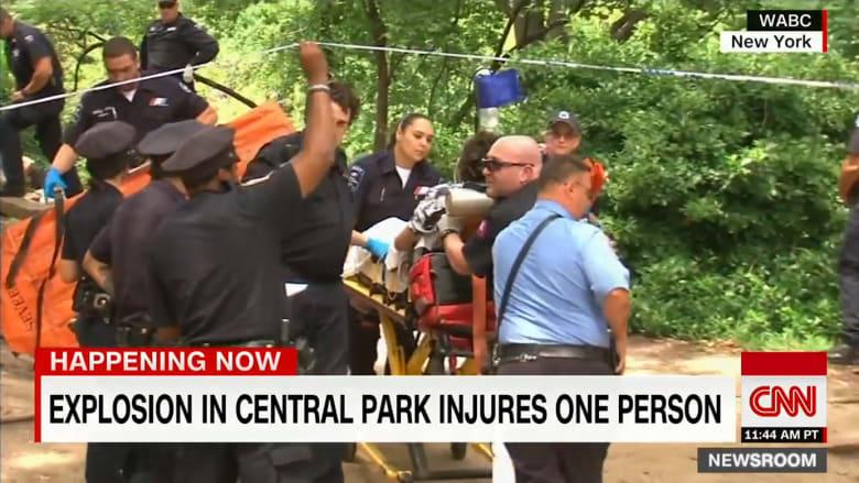 بالفيديو: انفجار في حديقة سنترال بارك في نيويورك
