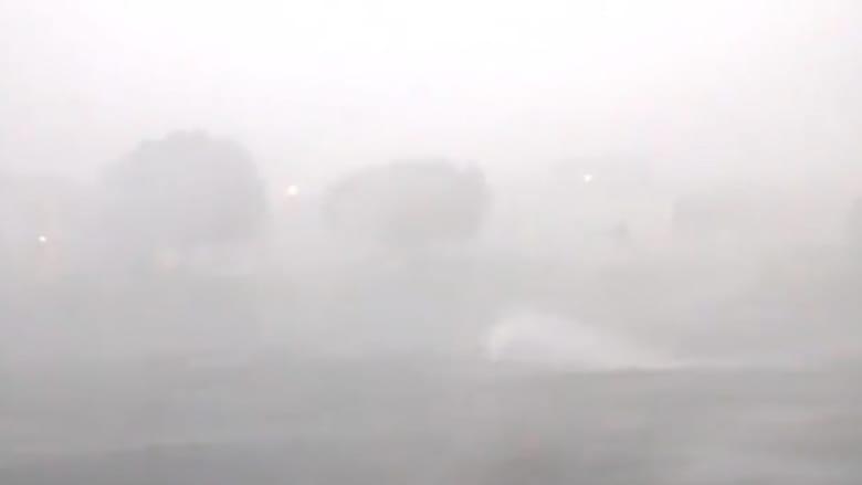تعد الأقوى منذ 11 عاما.. عاصفة هيرمين الاستوائية تجتاح فلوريدا
