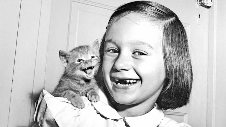 تعرّفوا إلى المصوّر الذي احترف تصوير القطط قبل اختراع الإنترنت!