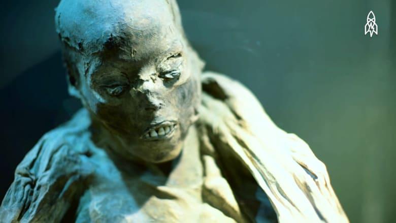 متحف مخصص للتحديق في وجه الموت!